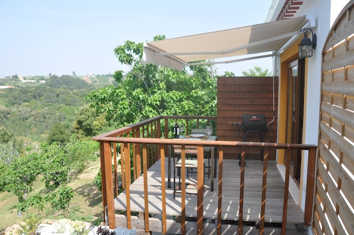 Renovated stables studio with deck and valley view