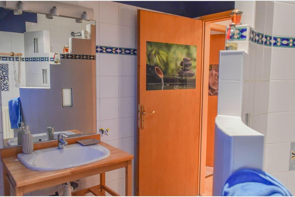 salle de bain douche et lavabo