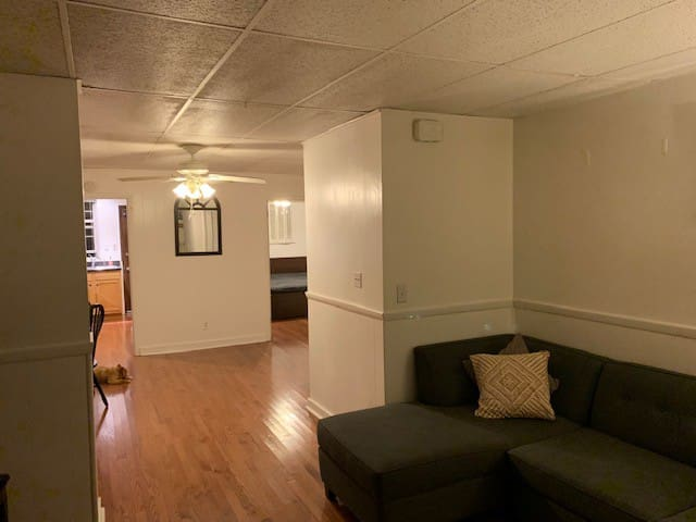 Shadyside Apartment