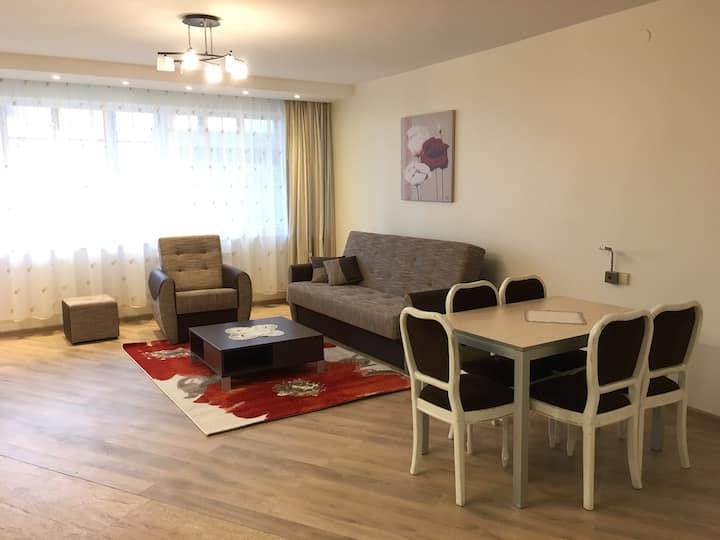 Spacious apartment in Kintai
