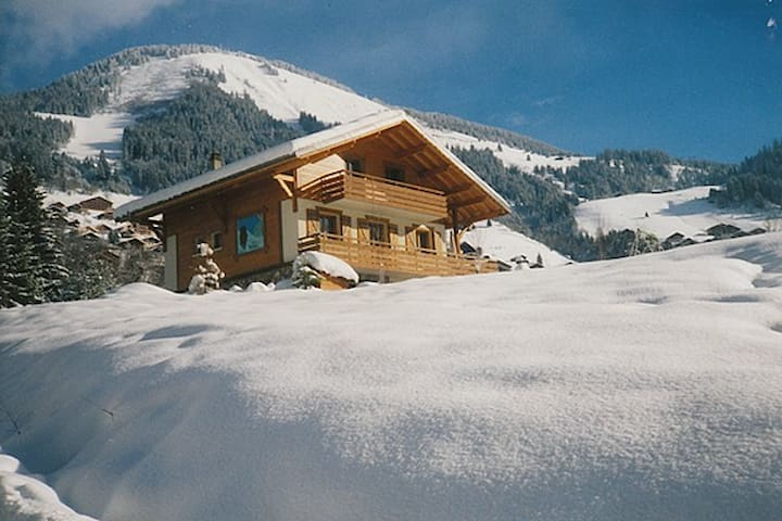 spacious chalet in the mountains