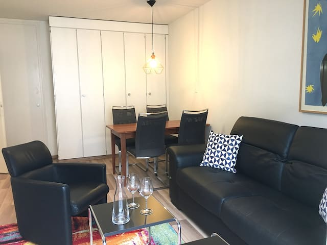 1BR flat close to lake/opera/city center (SF11)