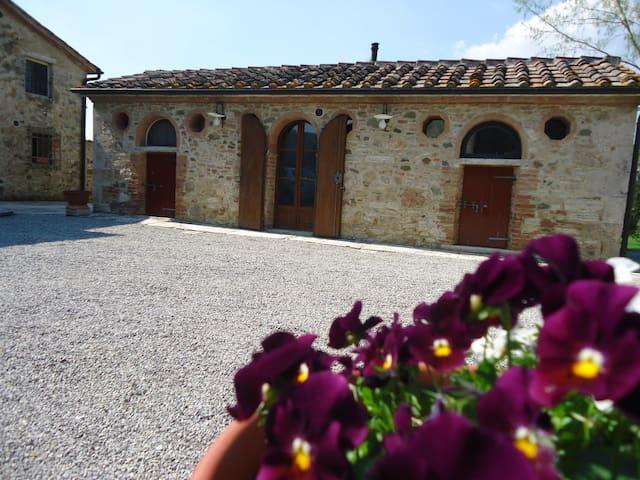 Monolocale - Podere Chiusella  - Rapolano Terme - Apartamento