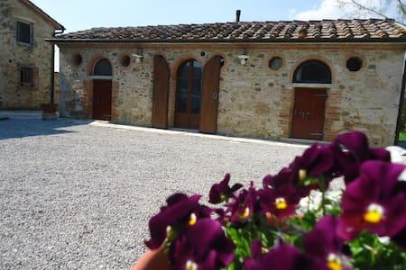 Monolocale - Podere Chiusella  - Rapolano Terme - Daire