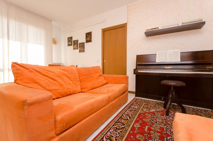 I offer the sofa in the living room - Treviglio - Huis