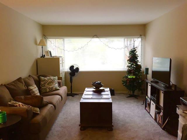 Cozy/Comfortable/Clean-Near Airport - San Bruno - Apartment