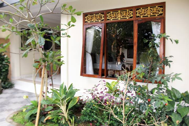 balimas guest house, kitchen, swimming pool, quiet