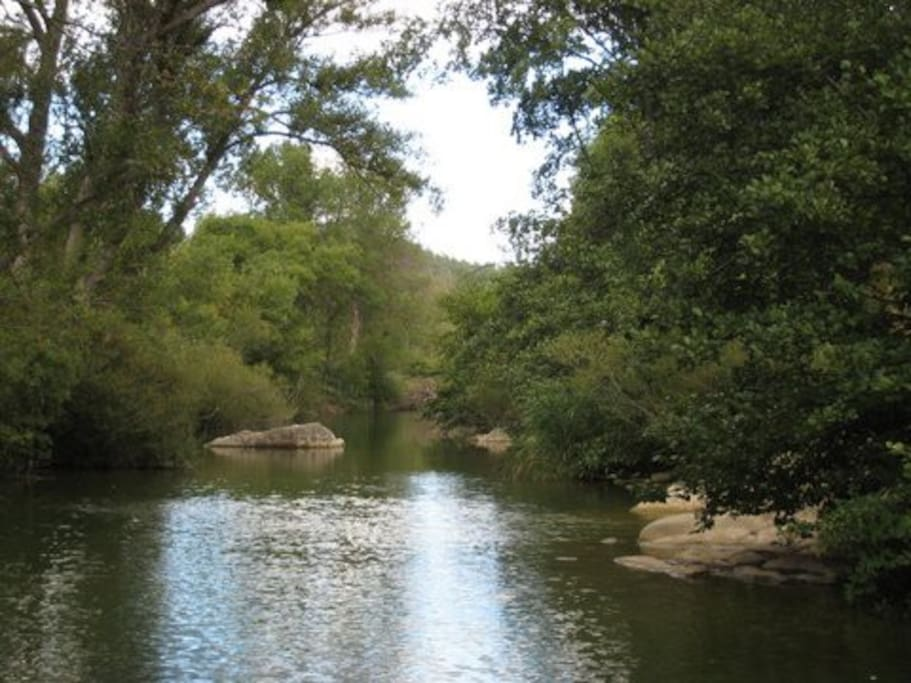 rivière Orbieu