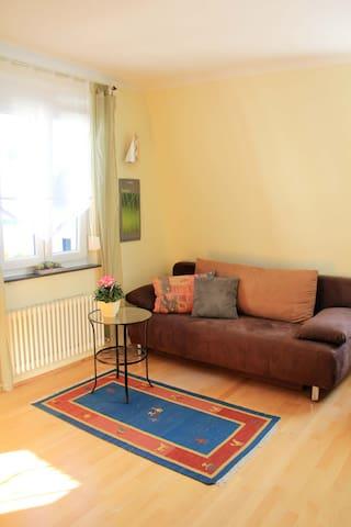 Wohnzimmer mit Radio, DVD Player,DVD`s und Bücher und Schlafsofa