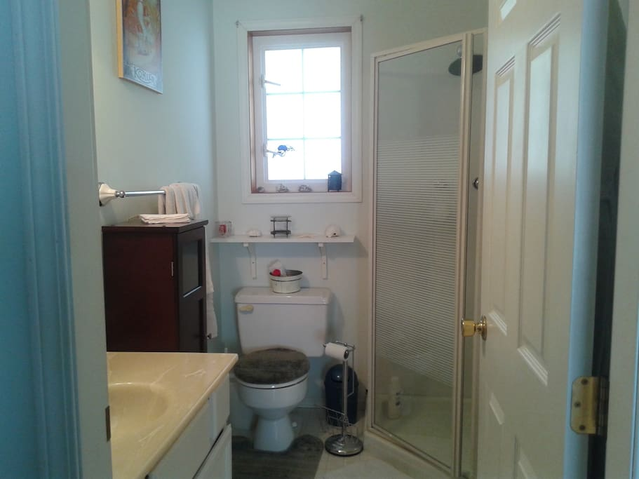 private bathroom with relaxing rain shower head