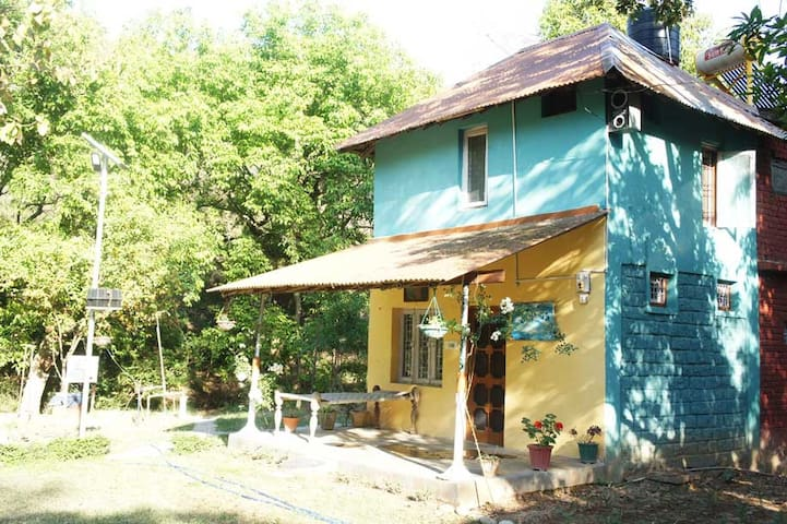 Myna's Nest - Quaint eco-friendly jungle hut - Kangra
