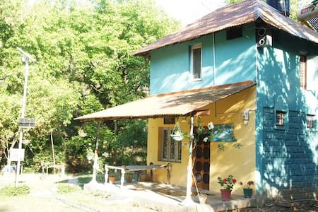 Myna's Nest - Quaint eco-friendly jungle hut - Kangra - Hut