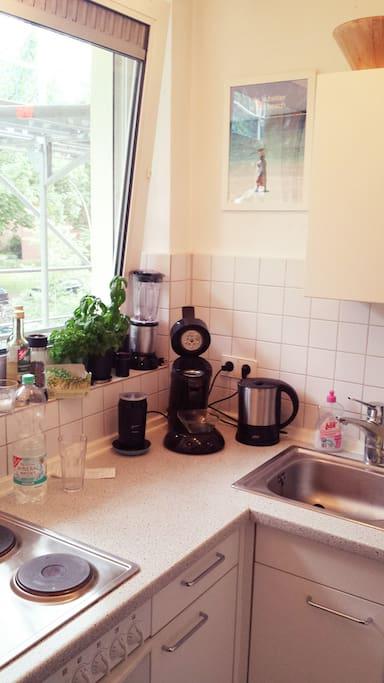 Küche: klein aber fein