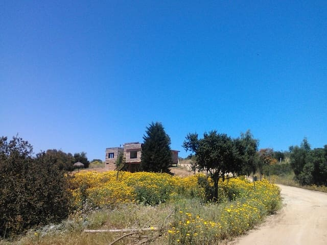 Hermosa casa en Maitencillo - Puchuncaví