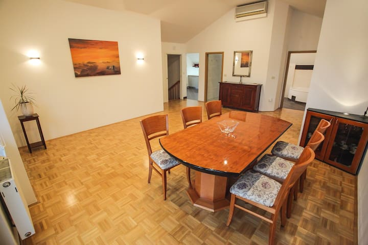 Spacious apartment in city Centre - Ljubljana - Pis