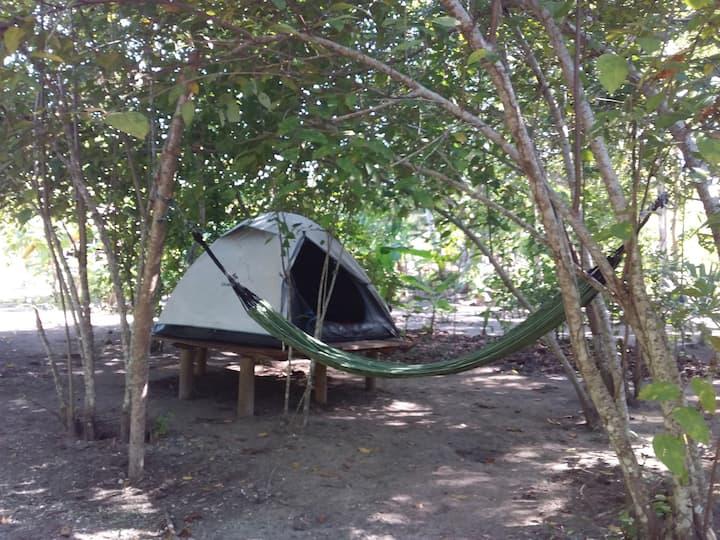 Finca Turistica Camping entre playa y Bosque