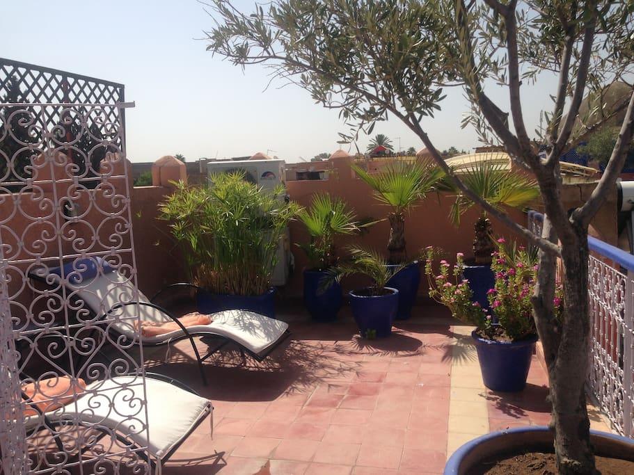 top terrasse
