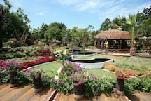 Nearby: Putrajaya Botanical Garden (pic from Google Image)