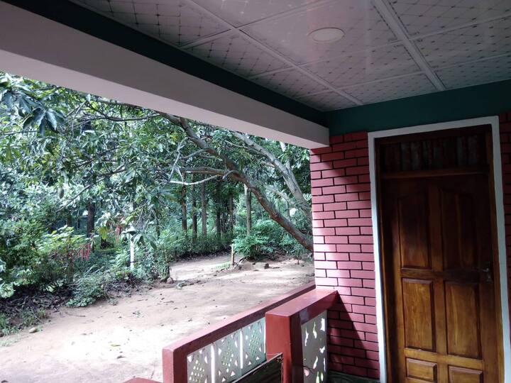Dambulla Pohoranwewa Ceylon Exploration Home