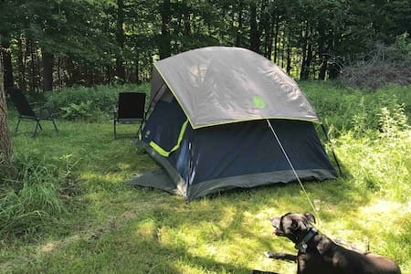 "Camp SkyTent: ""Grounder"" Farm Manor Experience"
