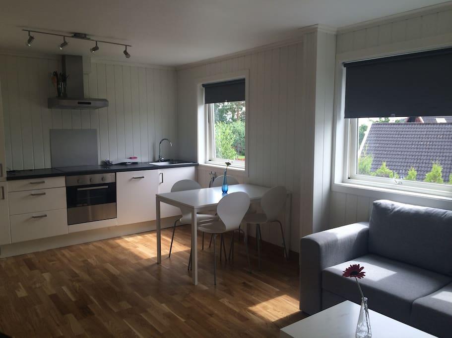 stue og kjøkken med TV /wifi