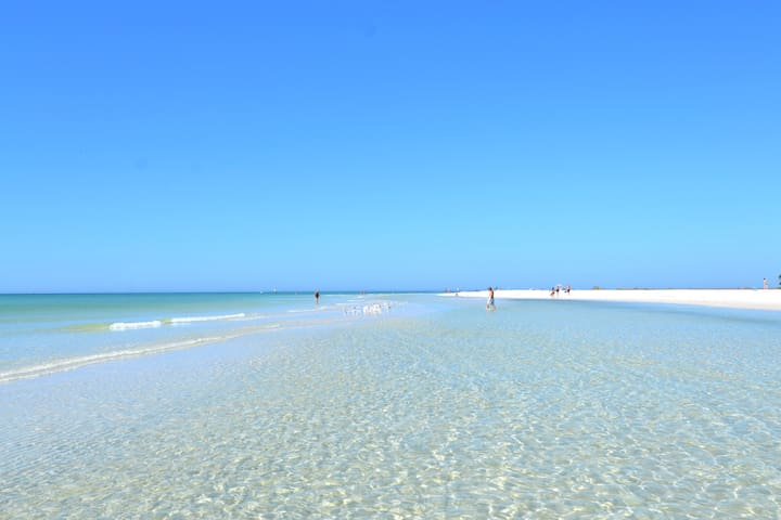 #1 Beach in US - Siesta Key Beach, 1.5 block walk