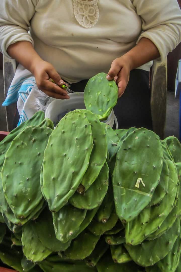 Cactus vendor