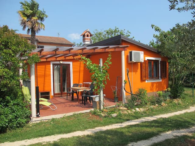 One bedroom house with terrace Barići (Umag) (K-13795)