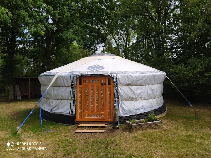 Authentic Mongolian yurt for larger groups