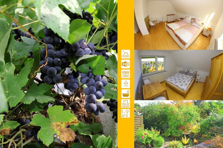 """Pure relaxation """"on the grapevine"""" in Bad Hersfeld"""