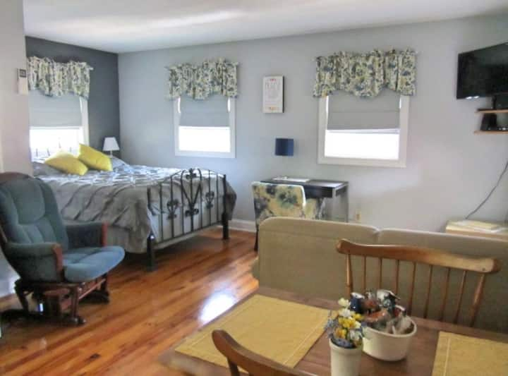 Clean, Cozy Studio Near Greer Hospital, GSP, & BMW