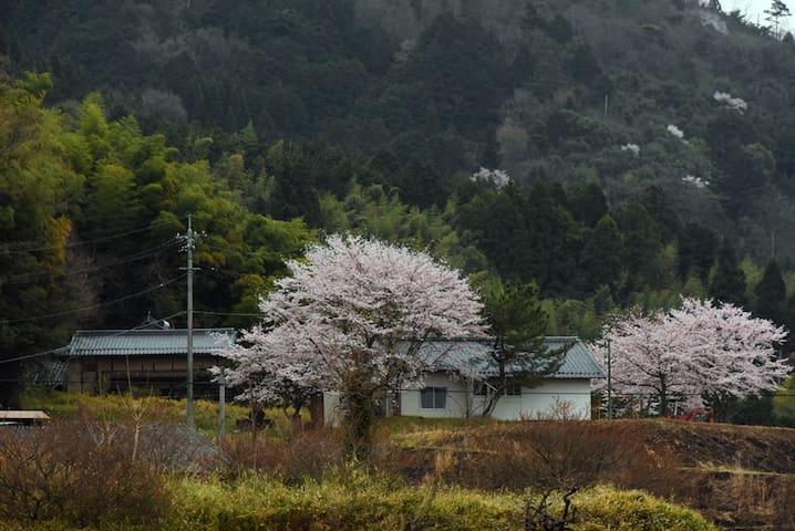 fantastic view & classic japanese house - Tsuyama