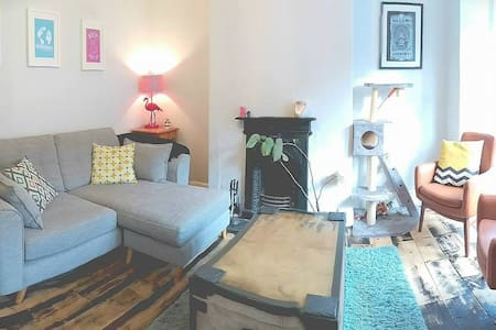 Beautifully renovated Victorian house with cats!