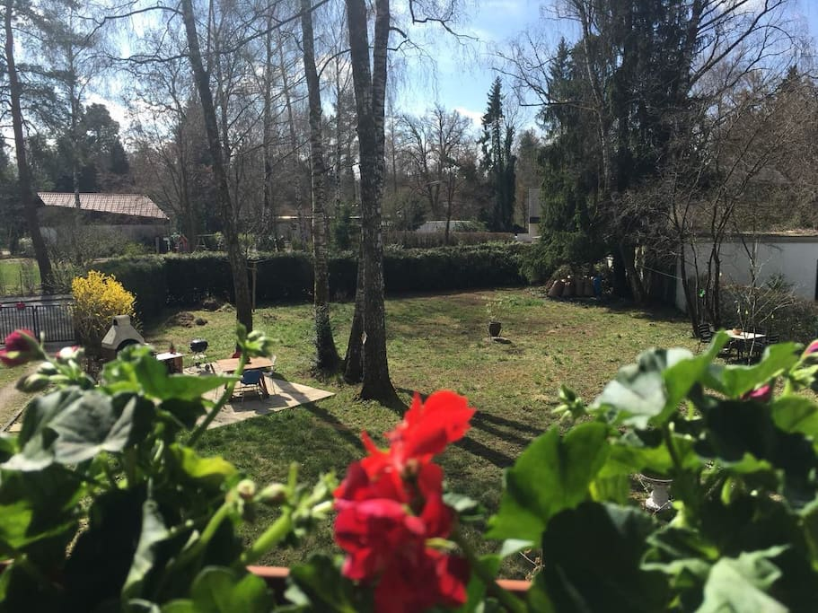 Garden - حديقة