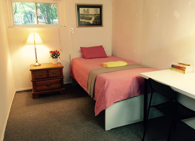 Clean,Quiet,Reasonable rate Private Basement room