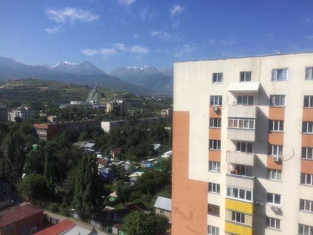 Гостеприимная кв. Cozy apartment - Almaty - Apartment