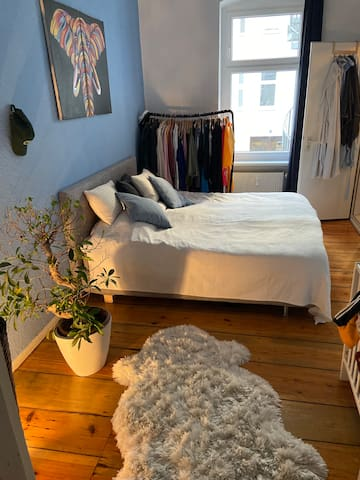 Cosy, charming room in the Centre of Berlin