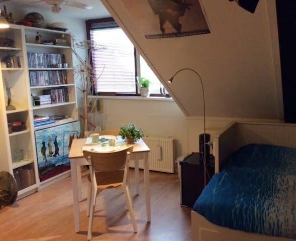 Alice's Attic Room bij UMC Radboud & Goffertpark.