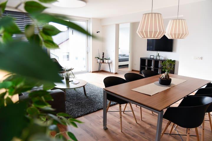 Villa Popp - Luxury Terrace Apartment Ljubljana +P