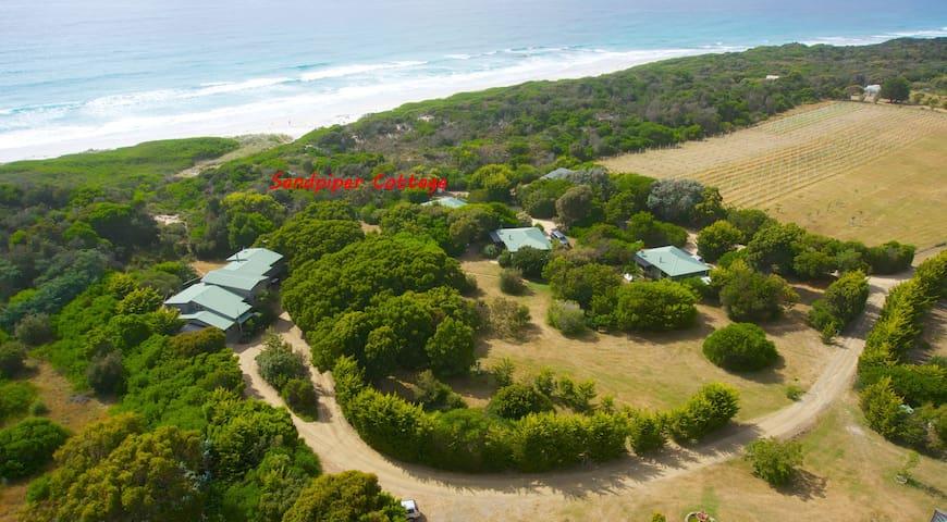 Sandpiper Ocean Cottage