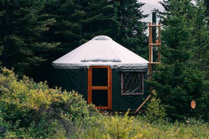 Hike In Yurts @ Radius - THE HOLLOW