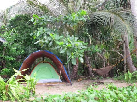 Tent sea view