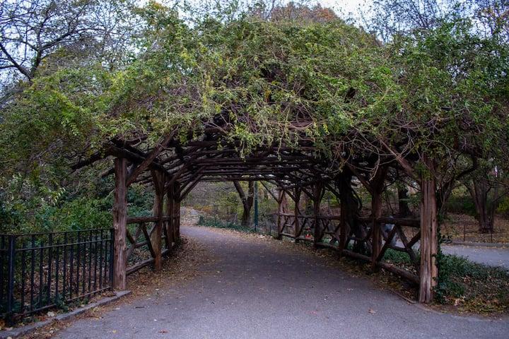 Pasaje tenebroso del Central Park.