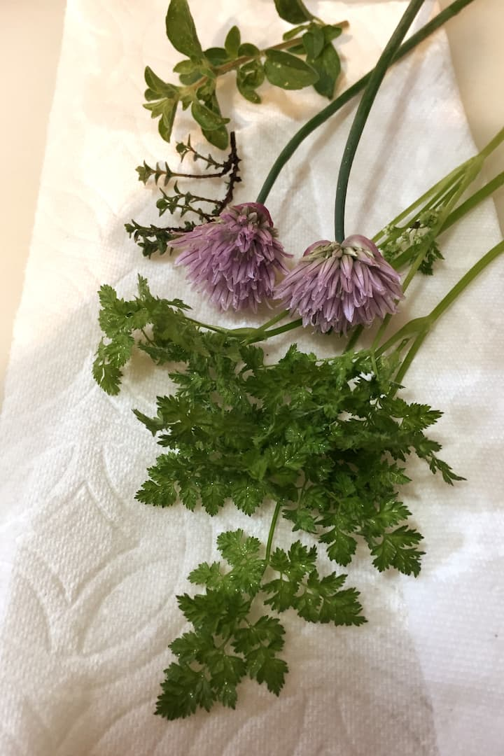 We pick and prep herbs from my garden.