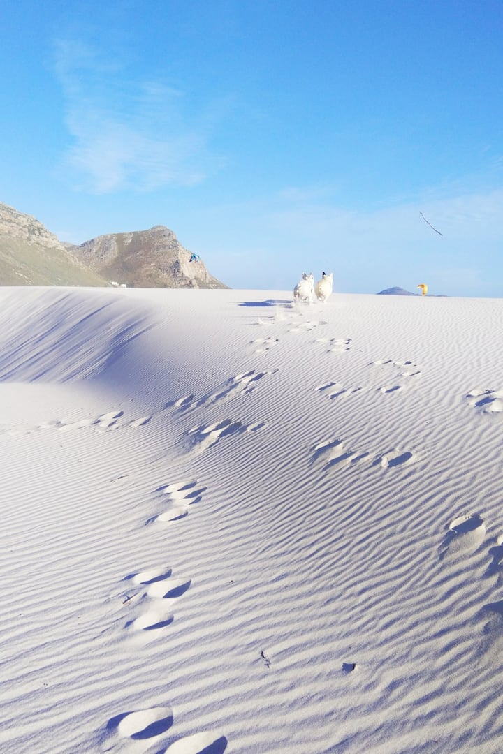 Snow White Dunes of Witsand Reserve
