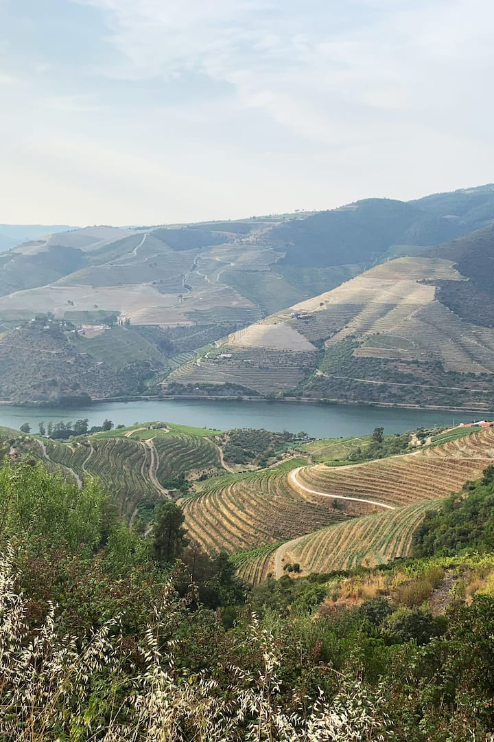 The best views in the Douro Valley