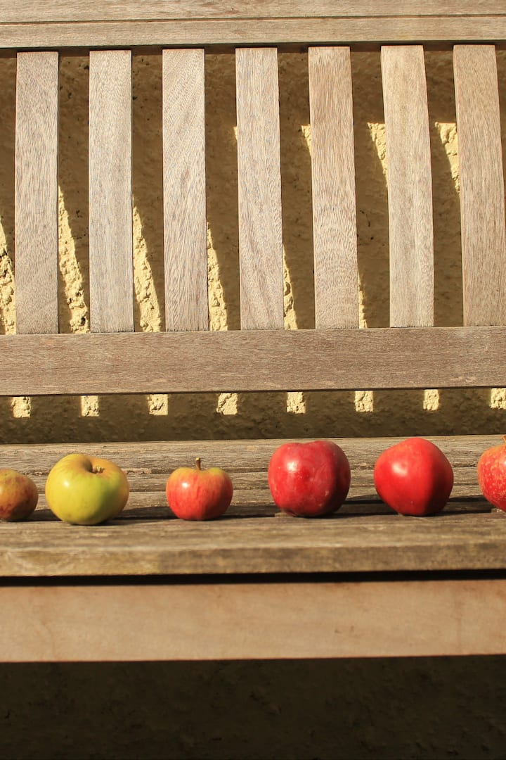 9 different apple varieties to pick from