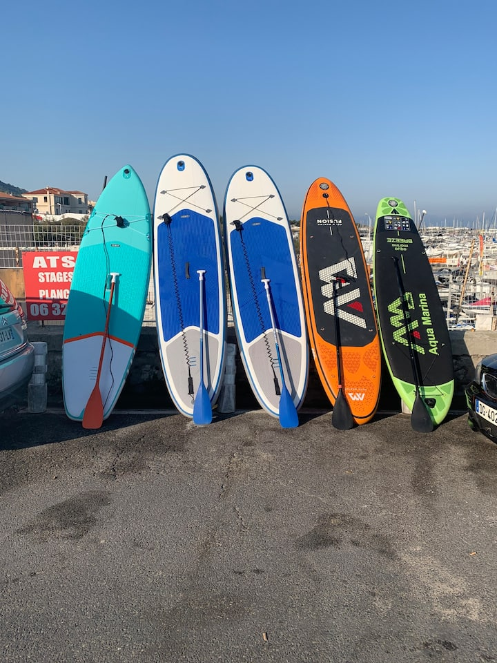 Paddles disponibles