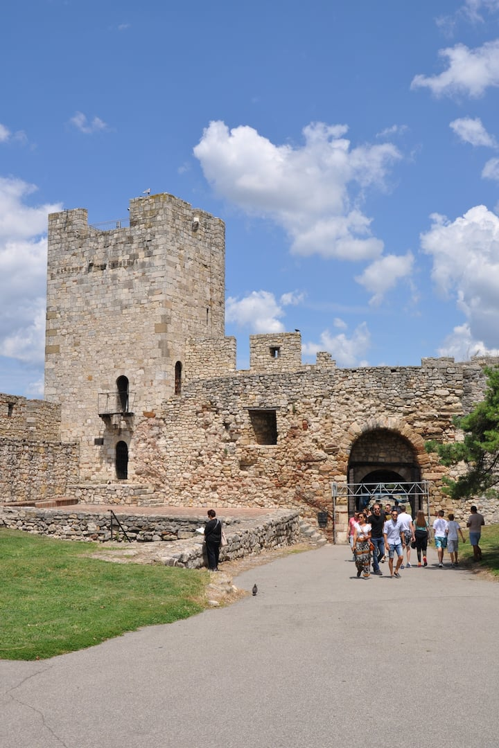 Medieval Belgrade and its many battles