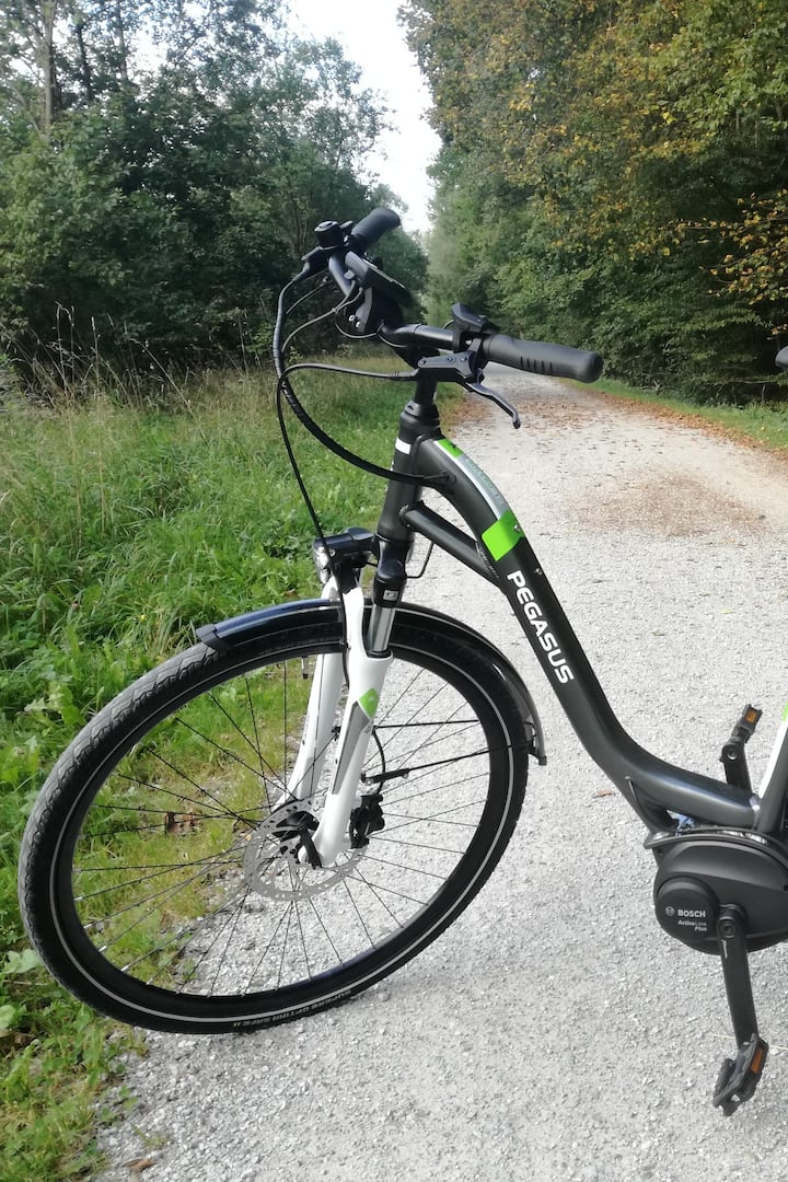 New E-Bikes with Bosch motor